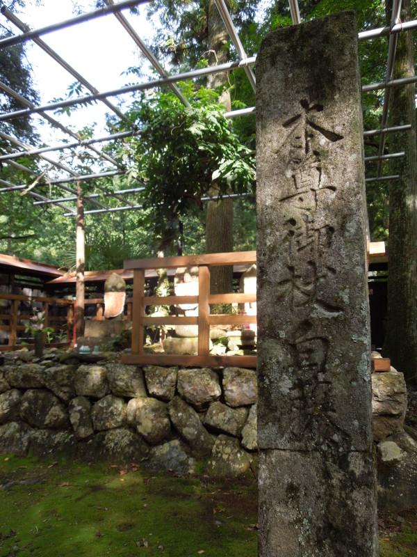 5.「本尊御杖白藤」の標石と藤と棚
