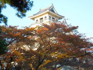7.長浜城(南西よりH.27.10.30撮影)