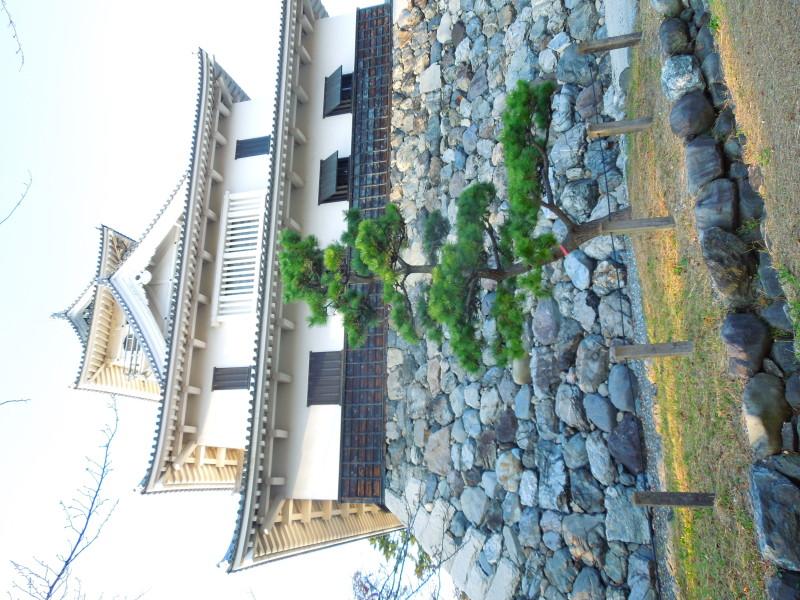 6.長浜城(南方よりH.27.10.30撮影)